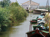 Albufera Nature Reserve Private Tour