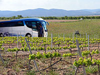 Valencia wine bus tour