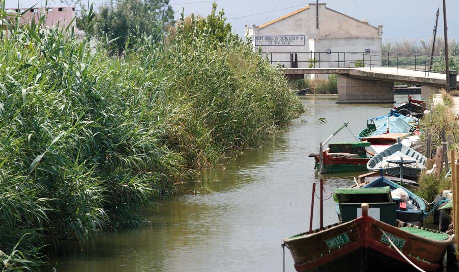 Valencia, Spain - Albufera and Palmar Lake Tour - from €13